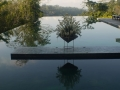 infinity-pool-honeymoon-Alila-Ubud-Bali